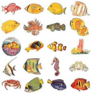 OESD 11180 Tropical Fish Embroidery USB Stick Design Pack